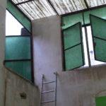 img02641-20121130-1606