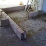 img03067-20110114-1203