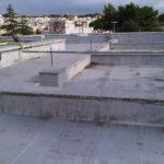 IMG02539-20121116-1320
