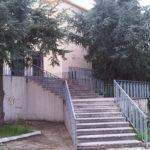 IMG02597-20121116-1344