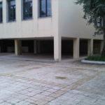 IMG02598-20121116-1344