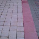 IMG01721-20120515-1511