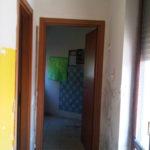 IMG02409-20121023-1258
