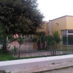 IMG02501-20121106-1332